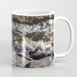 Torrent river Coffee Mug