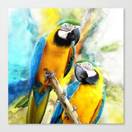 Macaw friends Canvas Print
