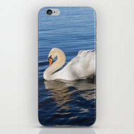 Swan Art. Two Beautiful Swans with Fluffy Wings on the Lake iPhone Skin
