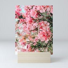 pink oleanders Mini Art Print