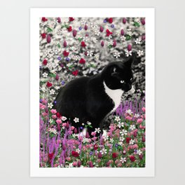 Freckles in Flowers II - Tuxedo Kitty Cat Art Print
