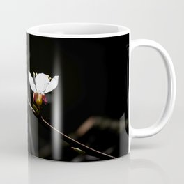 Sakura flowers on black 03 Coffee Mug