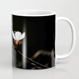 Sakura flowers on black 03 Coffee Mug