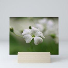 Petite fleur sauvage Mini Art Print