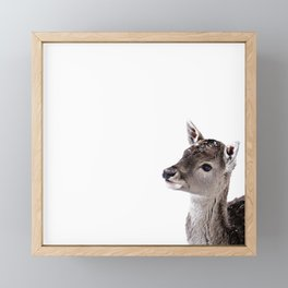 LITTLE FAWN FIONA 2 Framed Mini Art Print