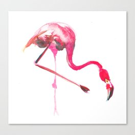 Flo the Flamingo Canvas Print