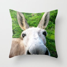 Watercolor Wild Donkey 01, St John, USVI, Hi! Throw Pillow