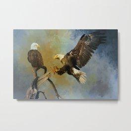 Eagles Landing Metal Print