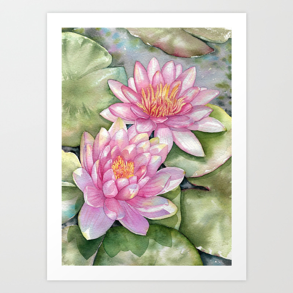 Pink Water Lilies Art Print by Jeannied PRN8563335