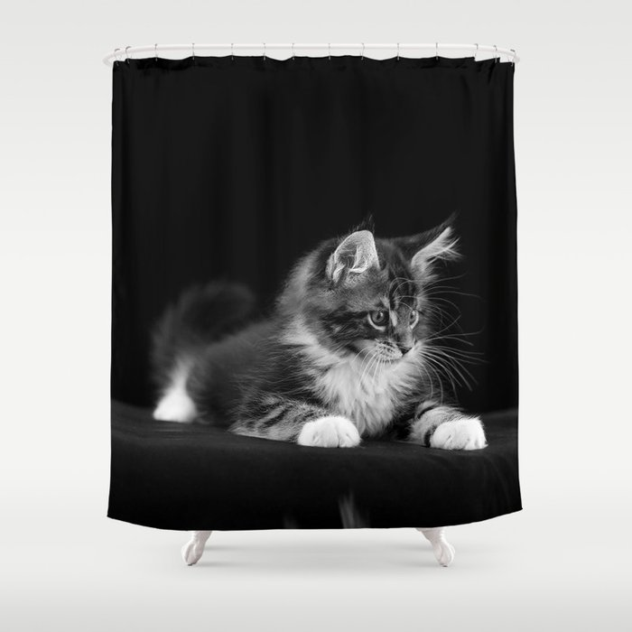 Cute Cat Shower Curtain by eugene30 | Society6