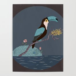 Toucan sitting on a branch with nest over the water Poster