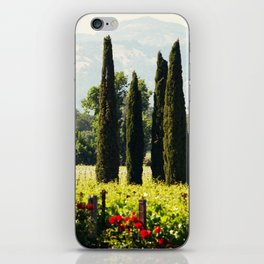 Vineyards of Napa iPhone Skin