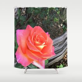 Rose On a fence Shower Curtain
