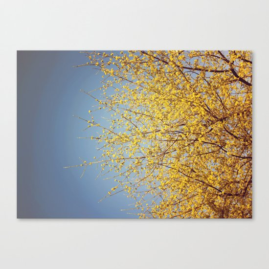 BRING ON THE SUNSHINE Canvas Print