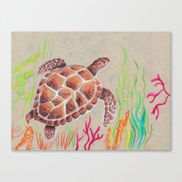 Tan Sea Turtle Canvas Print
