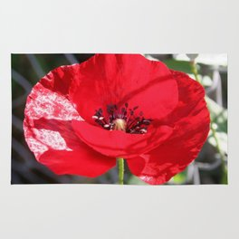 Single Red Poppy Flower  Rug