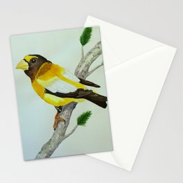 Evening Grosbeak Stationery Cards