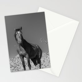 Wild_Horses B & W 3501 - Nevada Stationery Cards