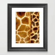Giraffe skin. Framed Art Print