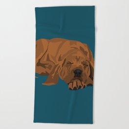Silas Beach Towel