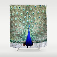peacock Shower Curtains featuring Peacock by WhimsyRomance&Fun