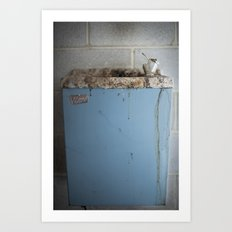 Bird Bath Art Print