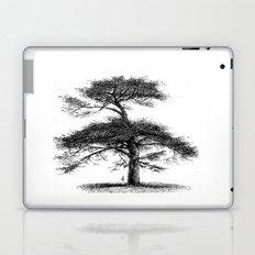 Big tree Laptop & iPad Skin