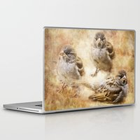 sparrow Laptop & iPad Skins featuring Sparrow by Kimberley Britt