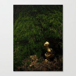 C3POO Canvas Print