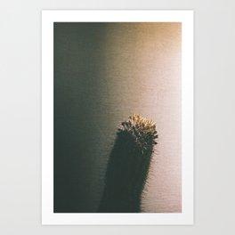 Light Poke Art Print