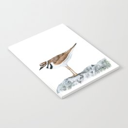 Killdeer Art 1 by Teresa Thompson Notebook