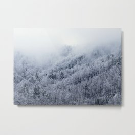 Winter Cometh Metal Print