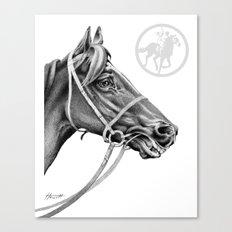 Veloso Racehorse NZ Canvas Print