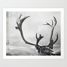 fig. 01 | moose Art Print