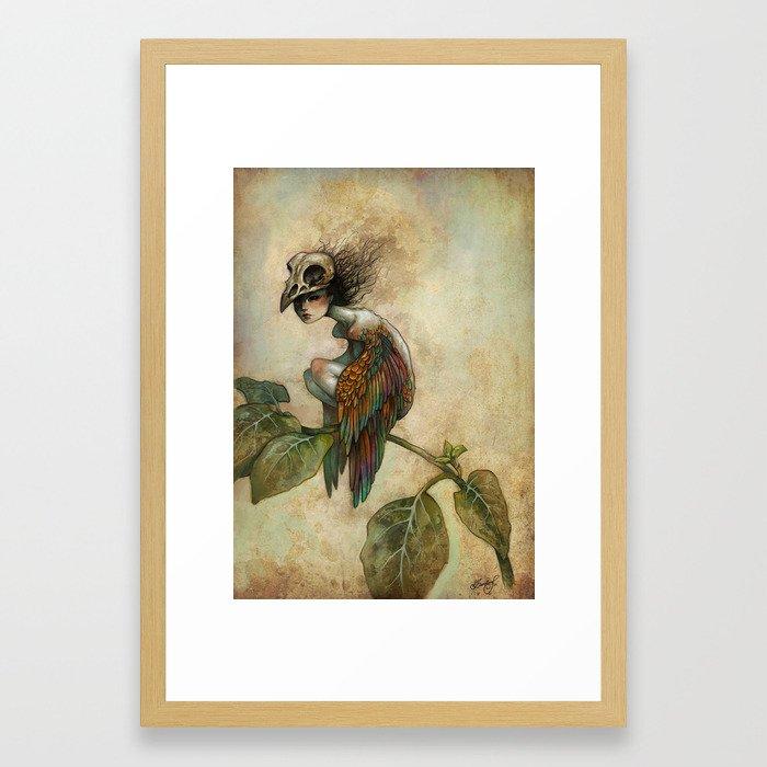 Soul of a Bird Framed Art Print by carolinejamhour | Society6