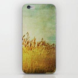Winter Gold iPhone Skin