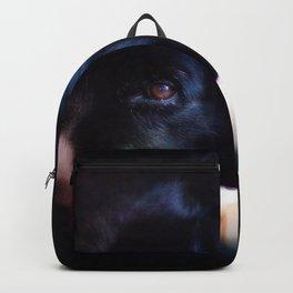 Rex Backpack