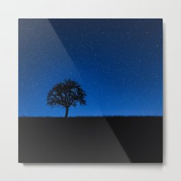 Tree and Stars Metal Print