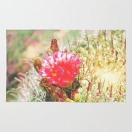 Iridescent Cactus Flower Rug