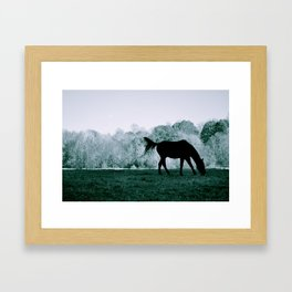 At the Greenway Framed Art Print