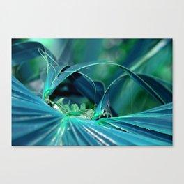 Palm leaf turquoise Canvas Print