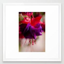 Rainy Day Fuschia  Framed Art Print