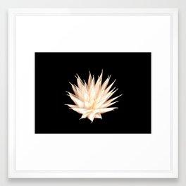 Efflorescence 25 Framed Art Print