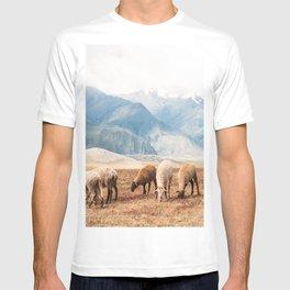 Peruvian Wool T-shirt