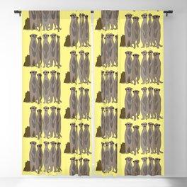 The Meerkat Mob I Blackout Curtain