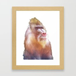 Mandrill Framed Art Print