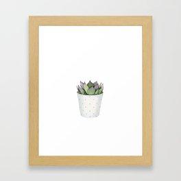 Succulent in a pot. Framed Art Print