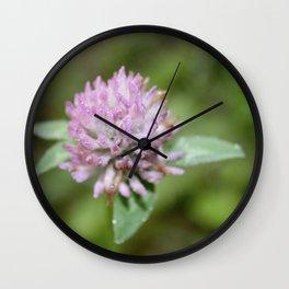 wild spring clover Wall Clock