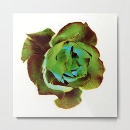 Green Rose, 1995 Metal Print