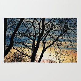Leafless Tree in the Sunset I Rug